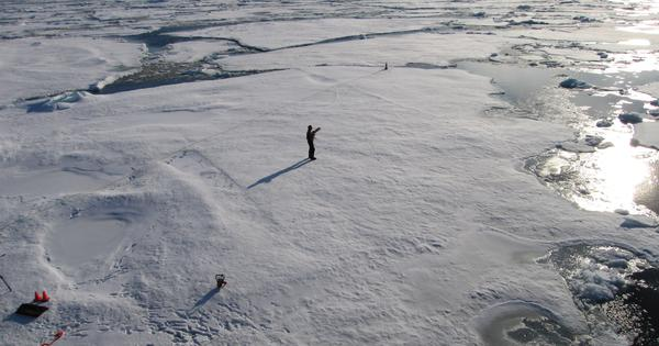 Arctic permafrost is thawing 70 years earlier than expected, find scientists: Reuters