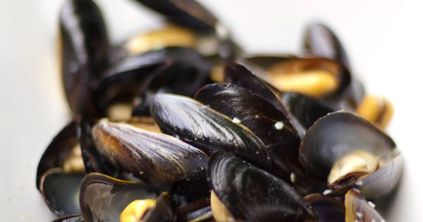 Microplastics from homes and factories are ending up inside mussels off Chennai's coast