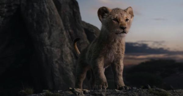 Remember who the true ruler is, says Shah Rukh Khan in Hindi trailer of 'The Lion King'