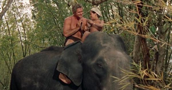 Hollywood revisited: What did Tarzan do when he came to India in 1962? Rescue elephants, of course