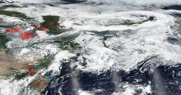 Frequent wildfires in the Arctic and the far North are worsening climate change