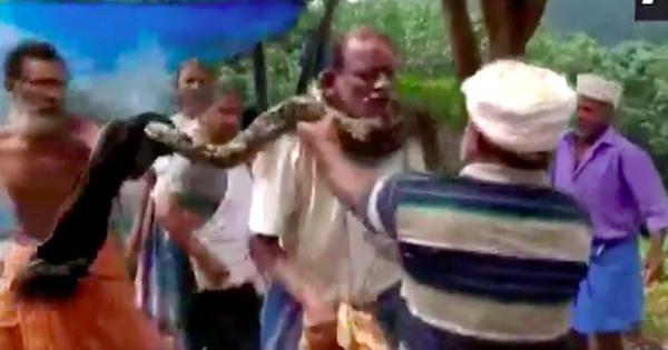 Watch: A python coiled itself tightly around this man's neck in Thiruvananthapuram