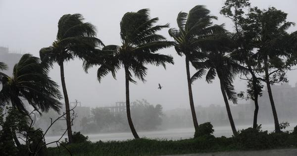 Cyclone Bulbul becomes 'very severe', Odisha and West Bengal prepare for rain