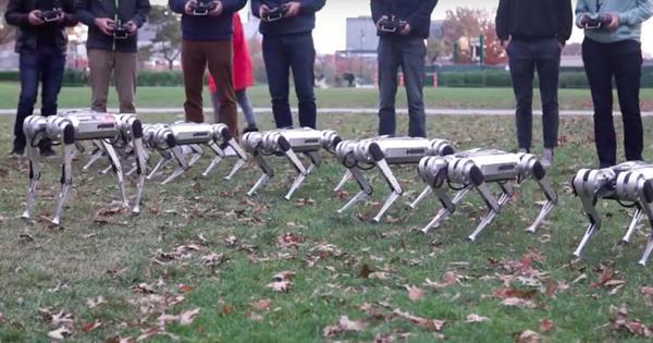 Watch: MIT's 'mini cheetah' robots frolic, do backflips, and even play football