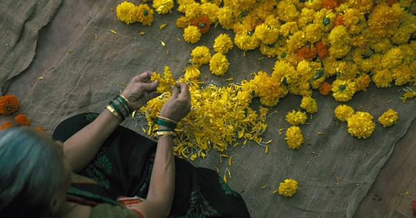 Eco India: The artisans recycling floral waste from Mumbai's Siddhivinayak temple into natural dyes