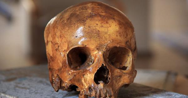 Early humans in Africa may have interbred with an unidentified ghost species
