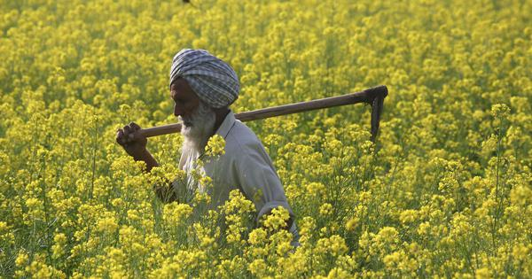 As migrant workers return home to villages, India's farming sector sees green shoots