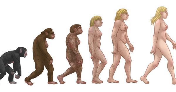 Human evolution: We've got the famous 'march of progress' image all wrong