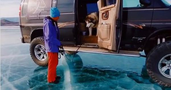 Watch: This dog is scared of stepping out of the vehicle onto a frozen lake