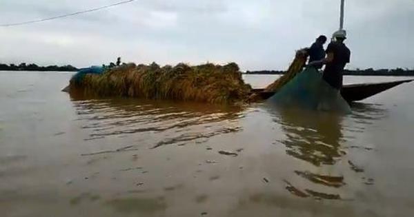 Assam: Watch these scenes of devastation as the flood situation in the state worsens
