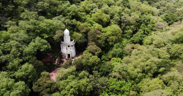 Eco India: A green oasis in Delhi NCR is fighting to be recognised as a forest by the government