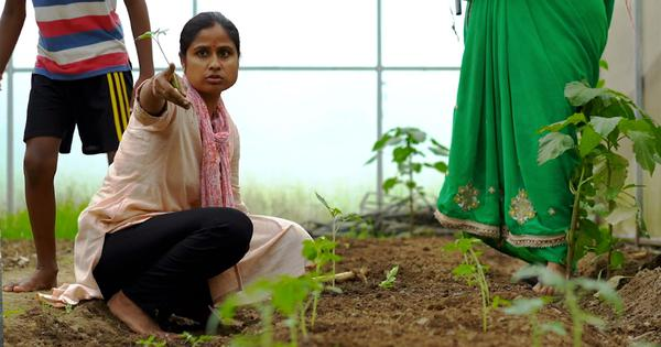 Eco India: A young changemaker is renewing hill farming and making it lucrative for her community