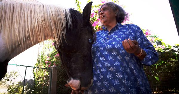 Eco India: Meet the rights activist who built a sanctuary that today has over 800 rescued animals