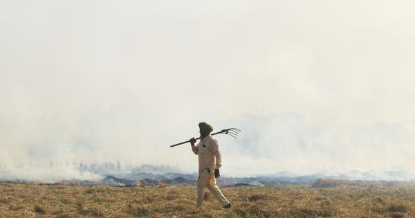 Pollution: Has North India had any success in controlling stubble burning?