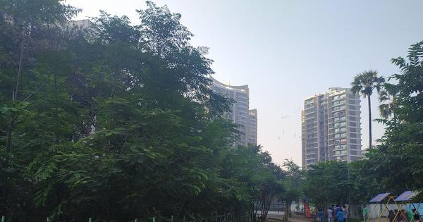 By planting trees the Miyawaki way, Mumbai won't undo the damage of deforestation