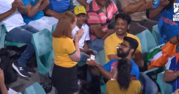 Watch: This marriage proposal in the stands during the India-Australia ODI in Sydney has won hearts