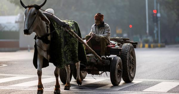Delhi records coldest day this season as minimum temperature dips to 4.1 degrees Celsius