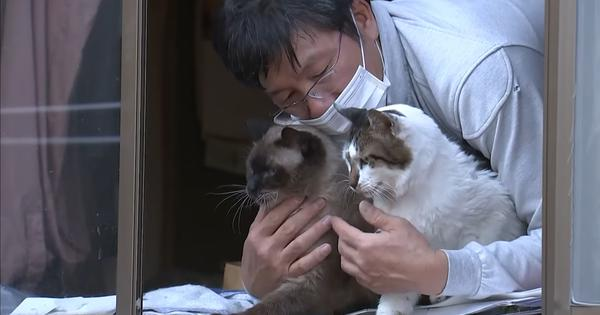 Watch: 'Pet whisperer' takes care of abandoned animals in Fukushima's restricted nuclear zone