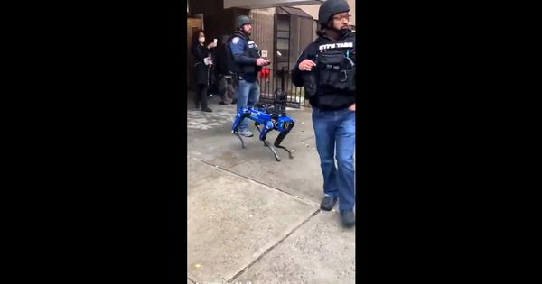 Watch: Video of New York Police Department's 'robot dog' walking alongside officers sparks outrage