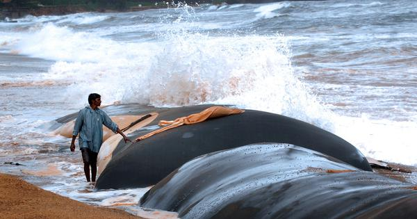 The geotextile tubes built in Andhra and Odisha to prevent coastal erosion are lying in tatters