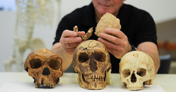 In a first, a new mystery human species has been discovered in Israel