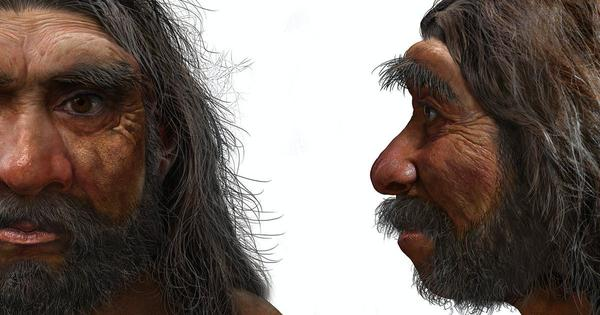 A new extinct human species found in China may replace Neanderthals as our closest relatives