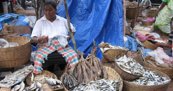 As Goa cracks down on fish imports to restore consumer trust after formalin scare, trade takes a hit