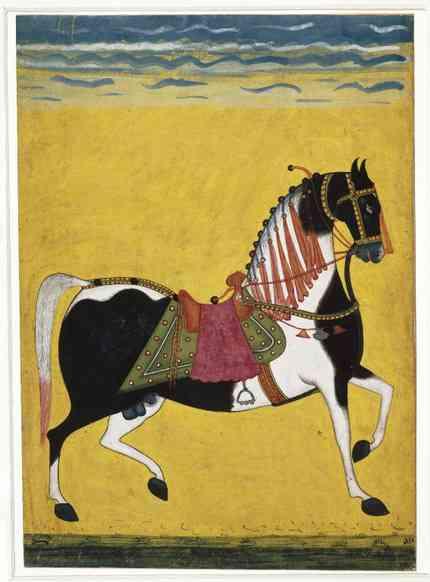 Hardcover - The Tale of The Horse: A History of India on Horseback - Yashaswini Chandra