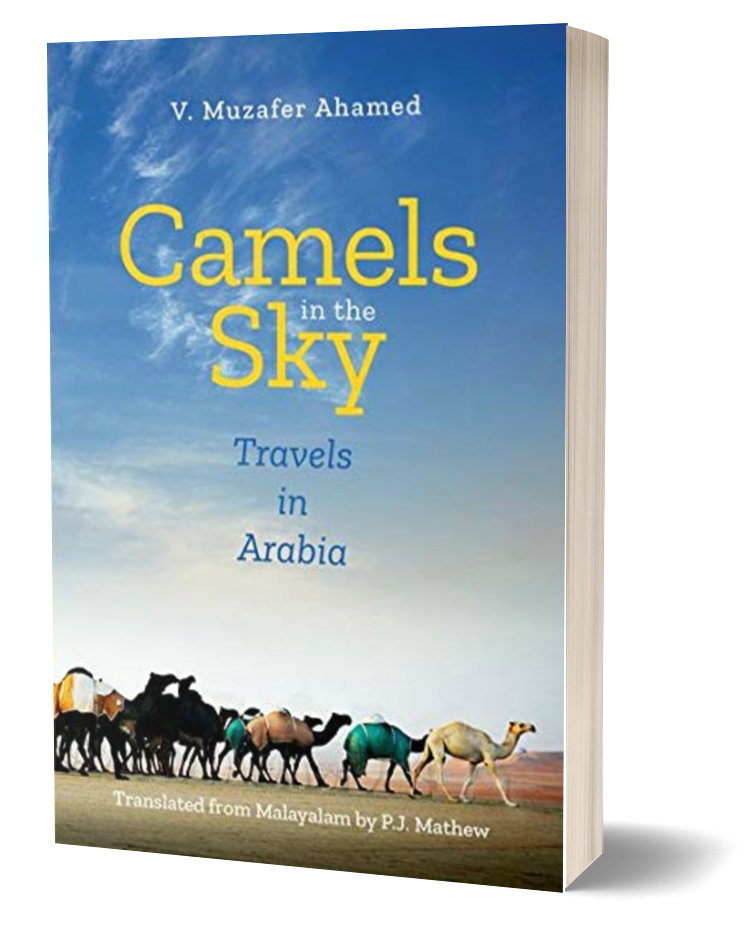 Camels in the Sky: Travels in Arabia