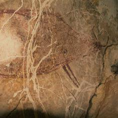 Is this 40,000-year-old Borneo cave painting the world's oldest figurative artwork?
