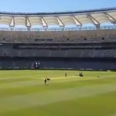Contrary to curator's claims, Cricket Australia denies asking for pacy Perth pitch: Report