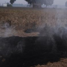 Eco India, Episode 10: Could this be a viable alternative to stubble burning?