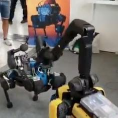 Watch what happened when three robot dogs met one another for the first time