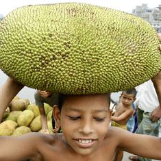 The global vegan food trend is spurring Kerala's jackfruit exports