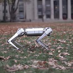 Watch: This four-legged robot can do back flips like a seasoned gymnast