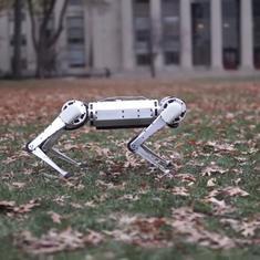 Watch: This four-legged robot can do back flips like a seasoned gymnast