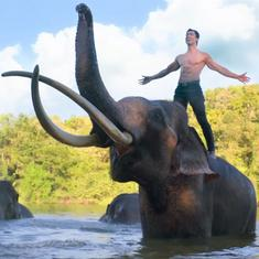 'Junglee' movie trailer: Vidyut Jammwal is every poacher's nightmare