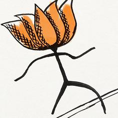 The Election Fix: Are BJP and its supporters wilfully crossing the line set by the model code?