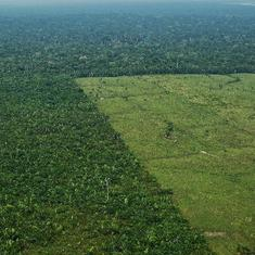 Under Jair Bolsonaro, Brazil is deforesting huge parts of the Amazon. Can the UN stop him?