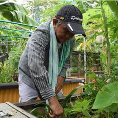 In Singapore, community gardens are helping the elderly deal with depression and loneliness
