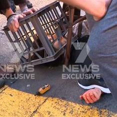 Milk crates against terror: Brave bystanders took down a knife-wielding man on a rampage in Sydney