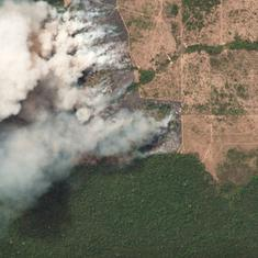 Satellite images of Amazon fires indicate that land is probably being cleared for cattle pasture