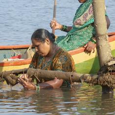 Scroll.in show 'Eco India' wins international prize for video on women oyster farmers in Maharashtra