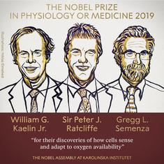 Nobel Prize for Medicine jointly awarded to three researchers from US, UK for their work on cells