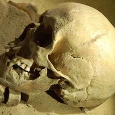 With new archaeological finds, what we know about the origin of humans is changing faster than ever