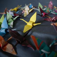 To get around the limitations of robotic design, I turned to an ancient Japanese craft – origami