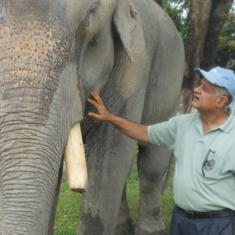 'We must realise that man-animal conflict threatens our existence': Meet Assam's Elephant Doctor