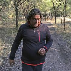 A former civil servant bought land around a Rajasthan tiger reserve and let the forest grow back