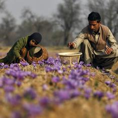 No outsider has bought land in Jammu and Kashmir, Centre tells parliamentary panel