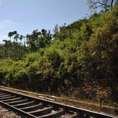 In Central and Western India, rails, roads and power lines are cutting through forest tracts